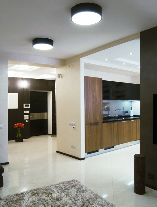 кухня - фото № 18044