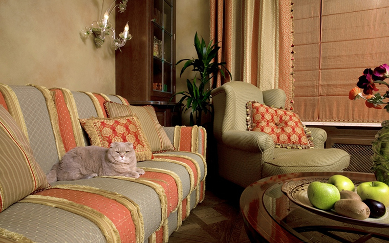 интерьер гостиной - фото № 18712