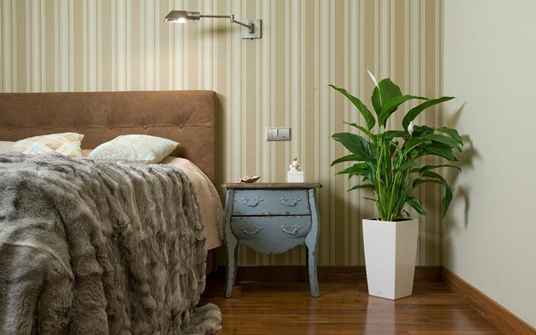 Фото № 20352 спальня  Квартира