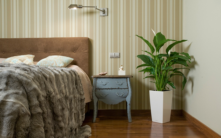 интерьер спальни - фото № 20352