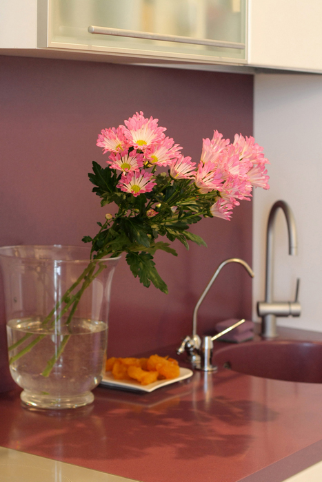 Квартира. кухня из проекта , фото №21902
