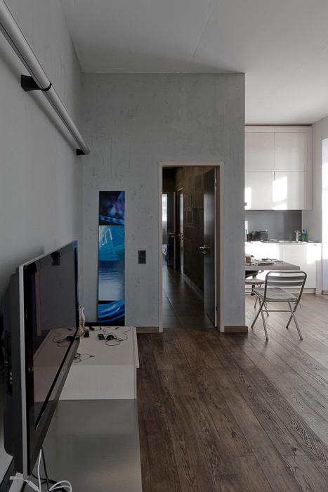 Квартира. гостиная из проекта , фото №22202