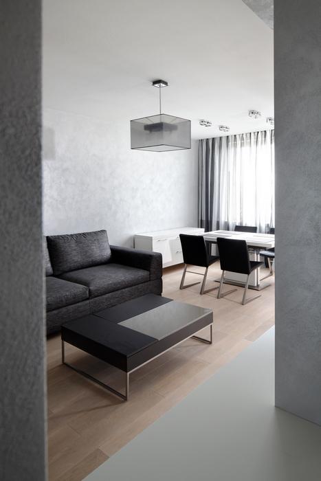 Квартира. гостиная из проекта , фото №23759