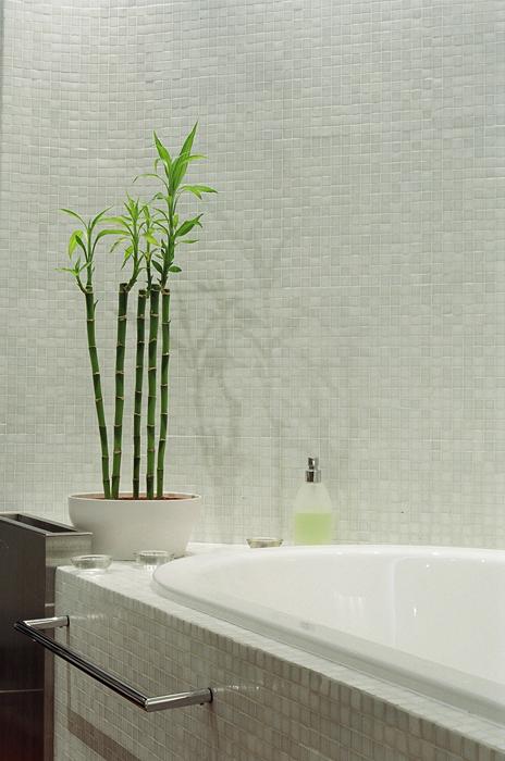 Фото № 26577 ванная  Квартира