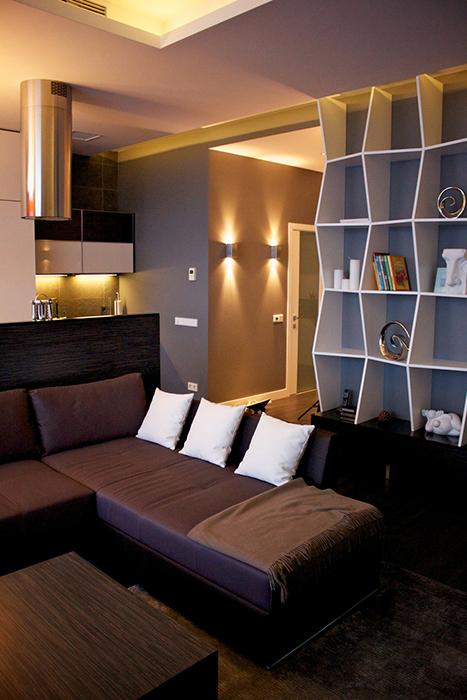 интерьер гостиной - фото № 29636