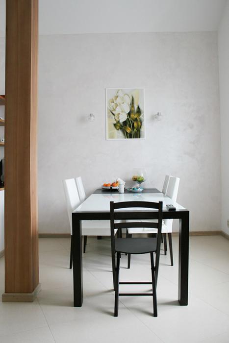 Квартира. кухня из проекта , фото №30403