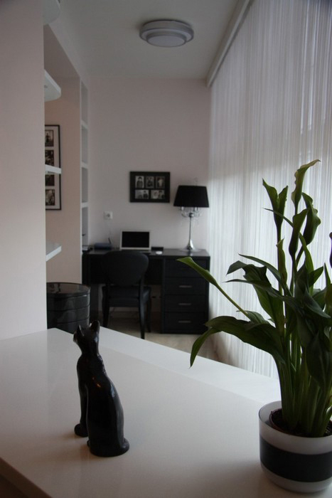 интерьер кабинета - фото № 31100