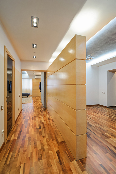 Квартира. холл из проекта , фото №33437