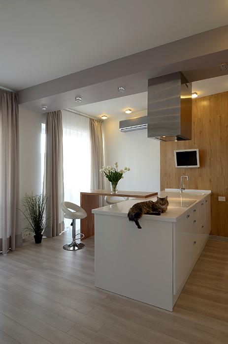 Квартира. кухня из проекта , фото №38868