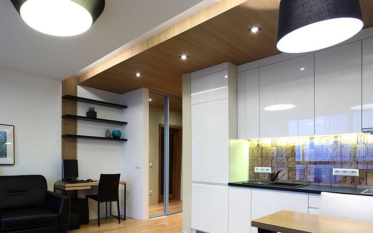Квартира. кухня из проекта , фото №47238