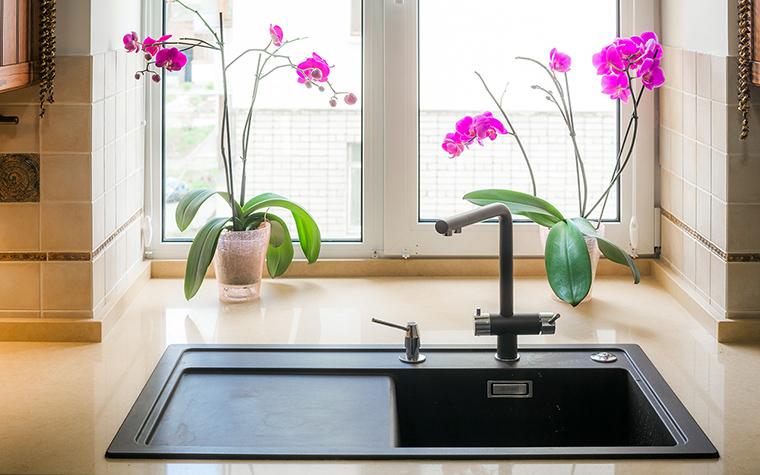 кухня - фото № 49704