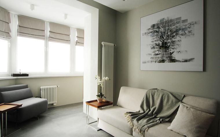 Квартира. гостиная из проекта , фото №71281