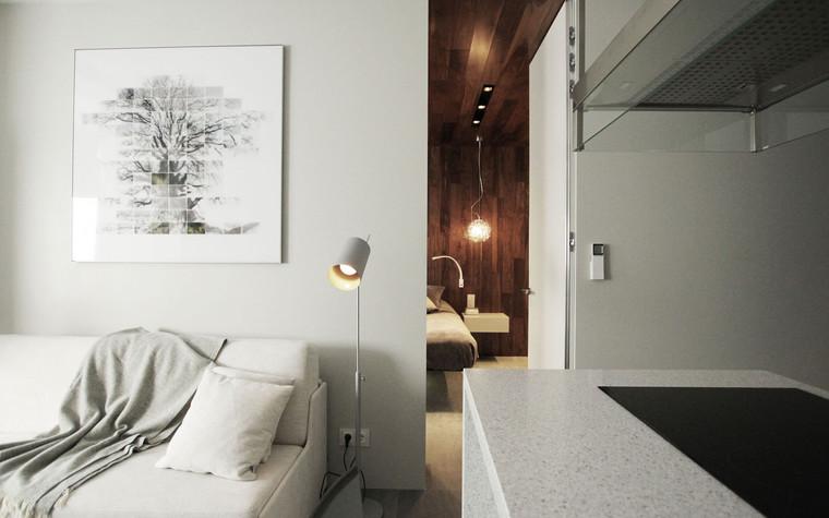 Квартира. гостиная из проекта , фото №71282