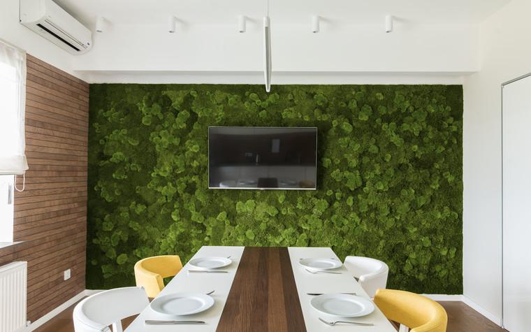 Квартира. кухня из проекта Green and Wood, фото №78807