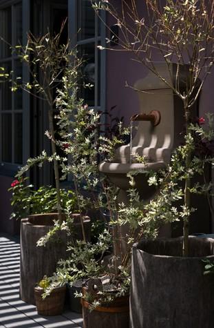 зимний сад - фото № 79741