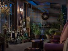 Квартира «Квартира с террасой в историческом центре города.», зимний сад . Фото № 25158, автор Лукач Александрина