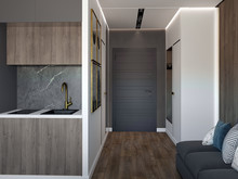 Квартира «ЖК Елагин Апарт», прихожая . Фото № 28389, автор Fisheye Architecture & Design   Александр