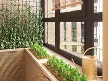 Квартира «Уютный Скандинавский стиль в ЖК Ясный», веранда лоджия . Фото № 29420, автор Ивлиева Евгения