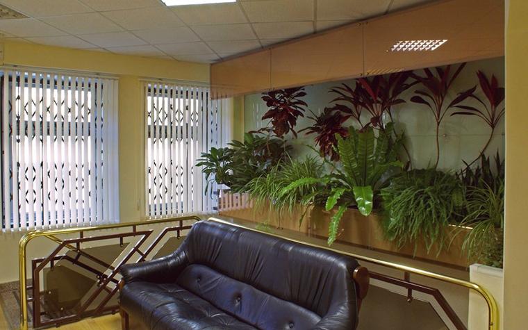 Фото № 10305 зимний сад  Дизайн офиса