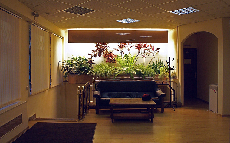 Фото № 10313 зимний сад  Дизайн офиса