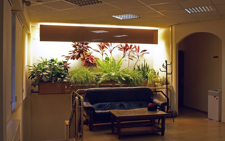 Фото № 10314 зимний сад  Дизайн офиса