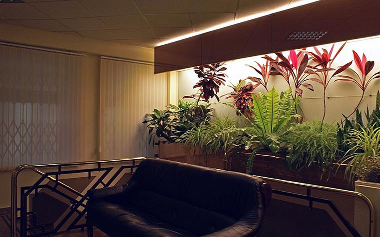 Фото № 10310 зимний сад  Дизайн офиса