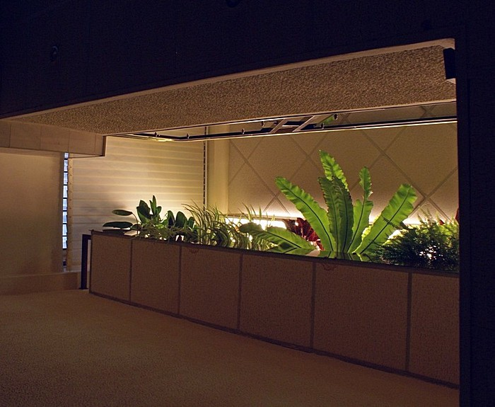 Фото № 10311 зимний сад  Дизайн офиса