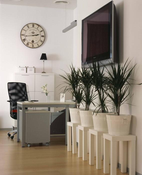 офисы - фото № 24505