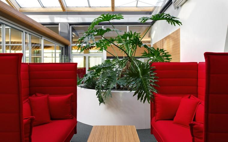 Фото № 50015 офисы  Дизайн офиса