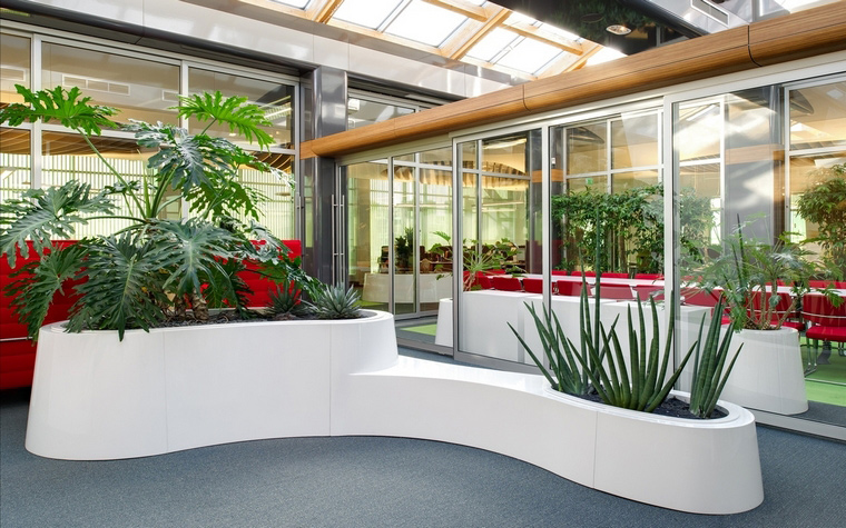 Фото № 50016 офисы  Дизайн офиса
