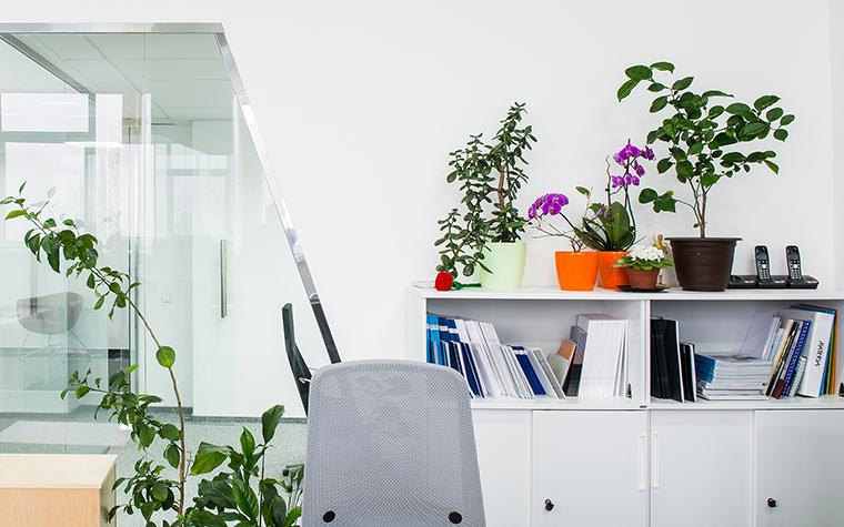 Дизайн офиса. офисы из проекта , фото №54578