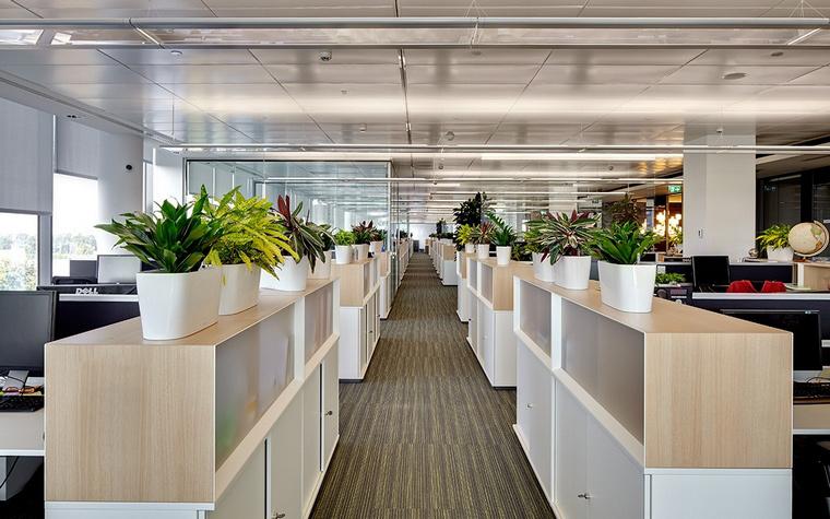 офисы - фото № 58278