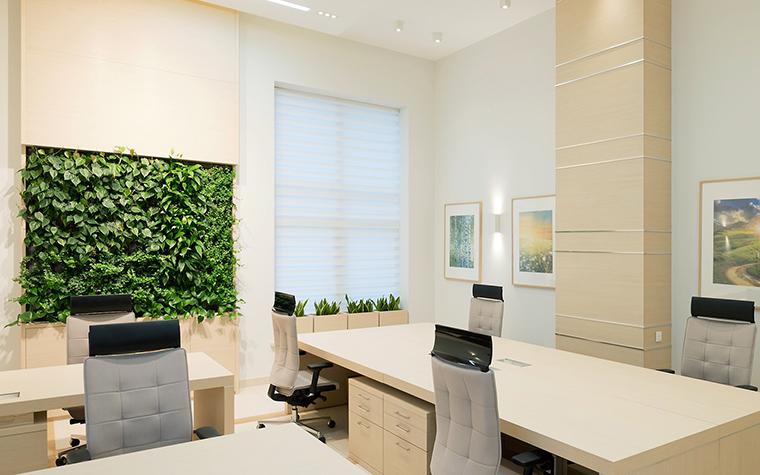 Дизайн офиса. офисы из проекта , фото №60100