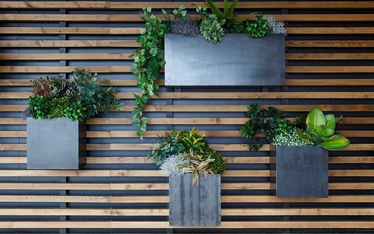 Ресторан. ресторан из проекта , фото №63881